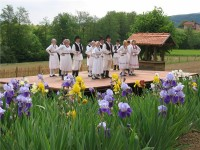 CEREMONY OF IRIS FLOWER, DONJA STUBICA, 20.05.2017.